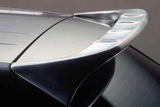 955 speedART TITAN roof spoiler P55 350 017 010 - Primary photo