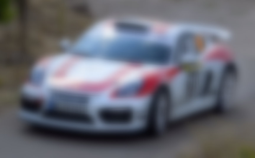 Porsche Cayman 981 GT4 Rally car prototype (FIA R-GT)